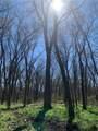 (+/-20 acres) TBD 485 Farm To Market Road - Photo 28
