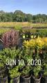 20881 Fm 2154 Farm To Market Road - Photo 7