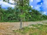 TBD - Lot 19 Sawmill Road - Photo 6