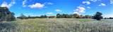 Lot 13 TBD Fm 2446 Farm To Market Road - Photo 1