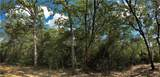 Lot 24 TBD Old Hickory Grove Rd County Road - Photo 16
