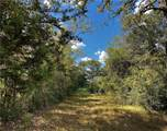 Lot 24 TBD Old Hickory Grove Rd County Road - Photo 7