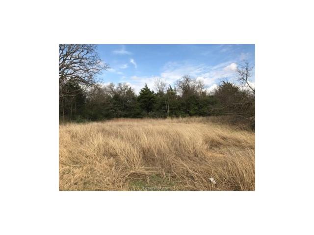 TBD Sandy Point Road, Bryan, TX 77807 (MLS #17000377) :: Treehouse Real Estate