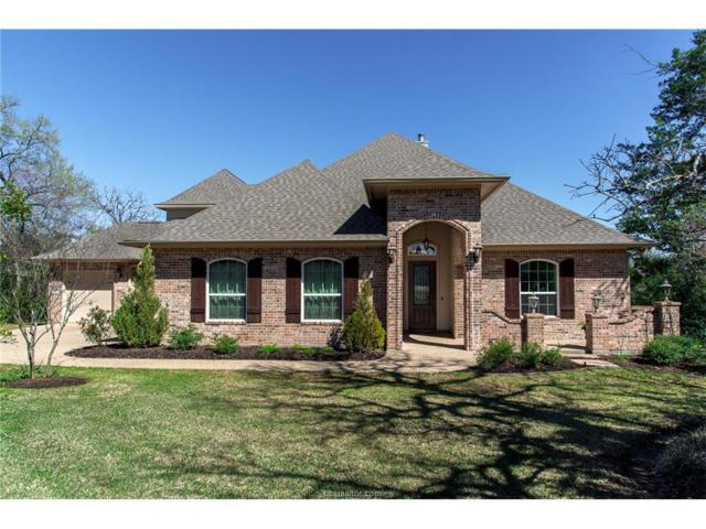 18023 Martingale Court, College Station, TX 77845 (MLS #17002668) :: Cherry Ruffino Realtors