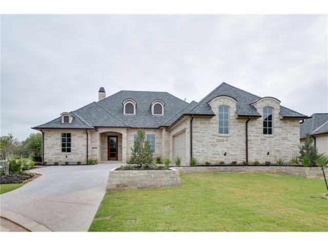 5024 Portofino Drive, Bryan, TX 77802 (MLS #17003366) :: The Lester Group
