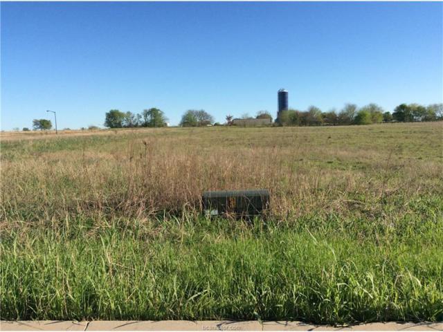 0000 Dove Crossing Lane, Navasota, TX 77868 (MLS #17003385) :: RE/MAX 20/20