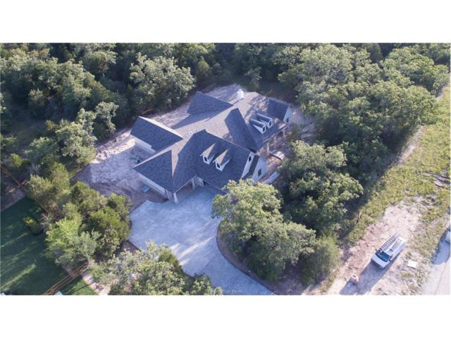 17324 Cheveyo Cove, College Station, TX 77845 (MLS #17005401) :: Platinum Real Estate Group
