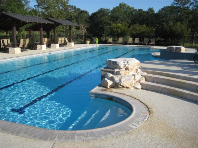 2807 Maroon Ct., Bryan, TX 77807 (MLS #17005544) :: Platinum Real Estate Group