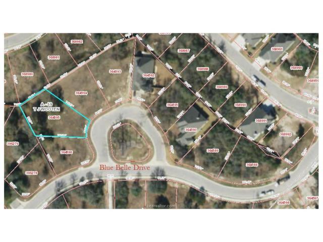 2946 Blue Belle Drive, Bryan, TX 77807 (MLS #17006518) :: Platinum Real Estate Group