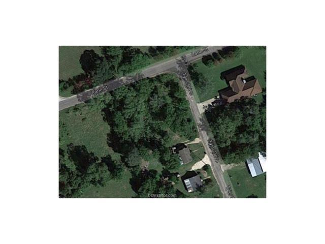 1008 Lane & Tyler, Navasota, TX 77868 (MLS #17007888) :: Platinum Real Estate Group