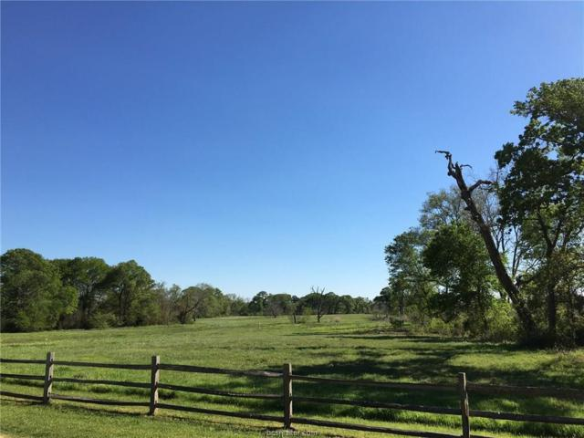 10496 Chamberlain Dr Drive, Iola, TX 77861 (MLS #17009259) :: The Tradition Group