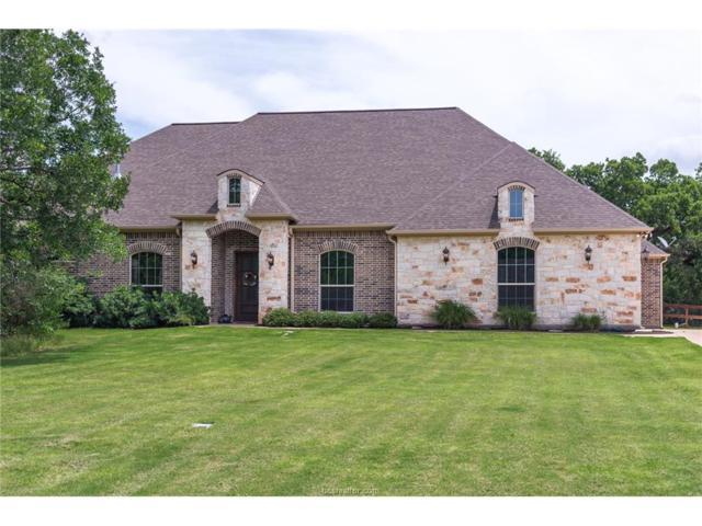 3444 Matoska Ridge, College Station, TX 77845 (MLS #17009591) :: Platinum Real Estate Group