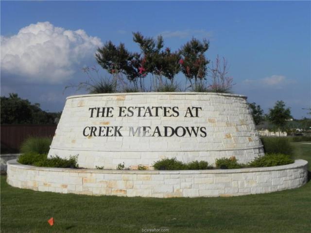 15625 Long Creek Lane, College Station, TX 77845 (MLS #17009729) :: Cherry Ruffino Realtors