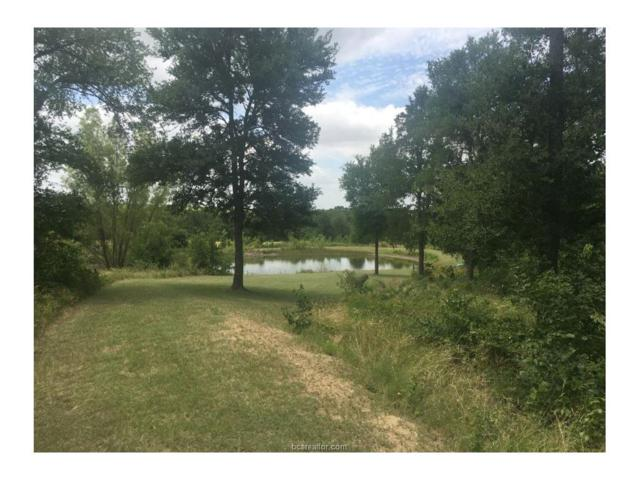 918 County Road 116, Other, TX 76661 (MLS #17009777) :: Platinum Real Estate Group