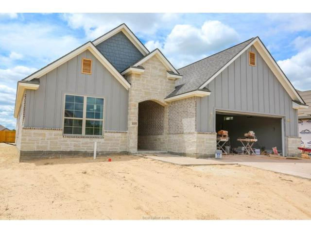 3009 Nobel Court, Bryan, TX 77802 (MLS #17009847) :: The Traditions Realty Team