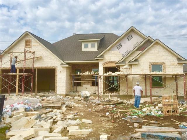 4671 S Stone Crest Court, Bryan, TX 77808 (MLS #17009899) :: Platinum Real Estate Group