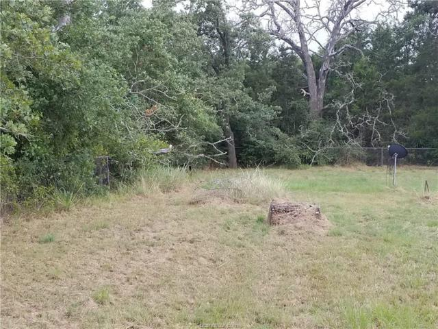 TBD Shady Oaks, Somerville, TX 77879 (MLS #17009966) :: Platinum Real Estate Group