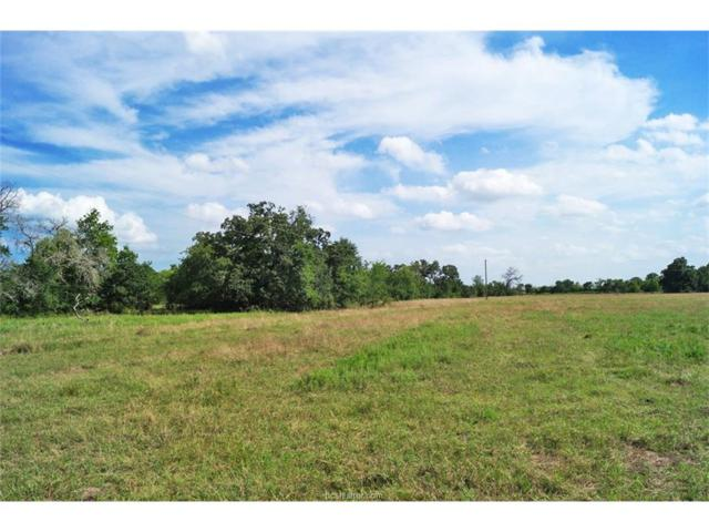TBD County Road 168, Iola, TX 77861 (MLS #17009968) :: The Traditions Realty Team