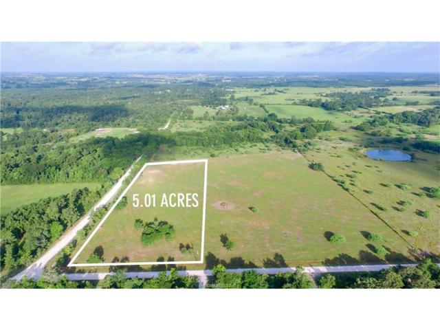 00000 Cr 207A County Road, Other, TX 77363 (MLS #17010013) :: The Traditions Realty Team