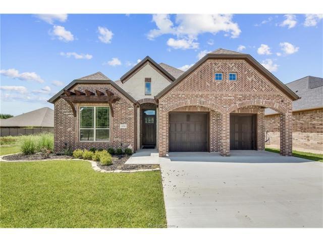 2959 Boxelder Drive, Bryan, TX 77807 (MLS #17010357) :: Platinum Real Estate Group