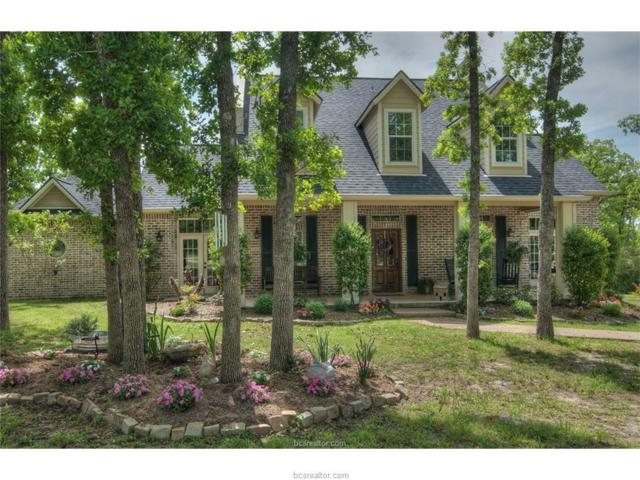 17334 Sioux Springs Drive, College Station, TX 77845 (MLS #17010406) :: The Lester Group