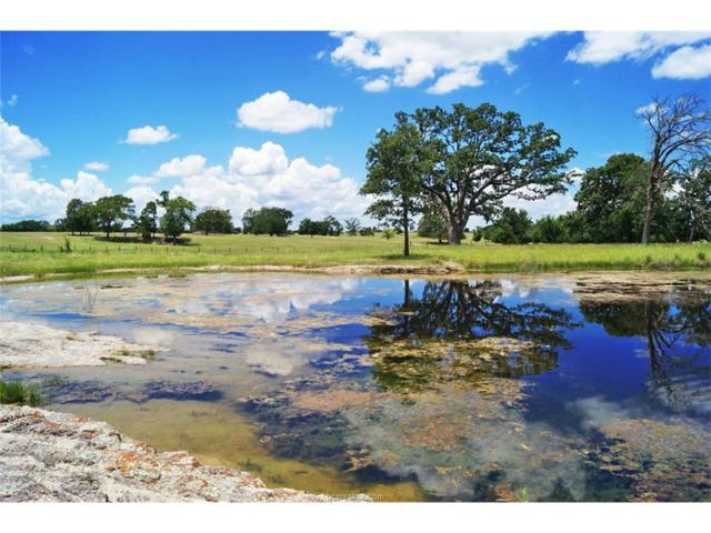 Tract 7 County Road 185, Anderson, TX 77830 (MLS #17010866) :: Platinum Real Estate Group