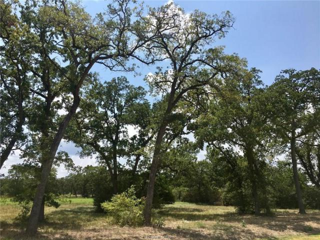 10704 Hampton Ct., Iola, TX 77861 (MLS #17011431) :: The Tradition Group
