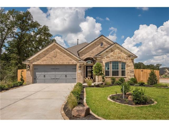 2600 Hailes Court, College Station, TX 77845 (MLS #17011452) :: Platinum Real Estate Group