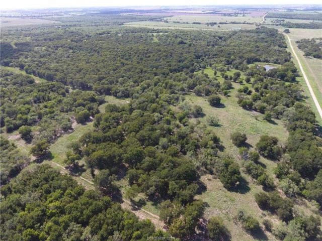 TBD 116.3 Acres Cr275, Cameron, TX 76520 (MLS #17011521) :: The Tradition Group