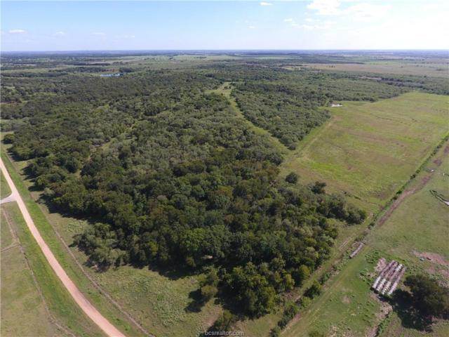 TBD 117.3 ACRES CR 275, Cameron, TX 76520 (MLS #17011522) :: The Tradition Group