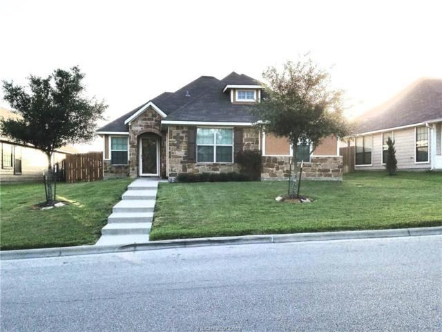 2037 Autumn Lake Drive, Bryan, TX 77807 (MLS #17011540) :: Platinum Real Estate Group