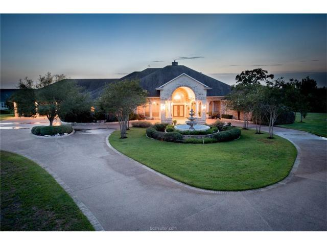 13822 Apricot Glen, College Station, TX 77845 (MLS #17011556) :: The Tradition Group
