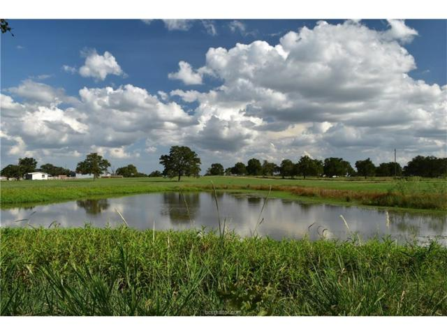1222 Pr 1282 (+/-34 Acres), Other, TX 78946 (MLS #17011568) :: The Tradition Group