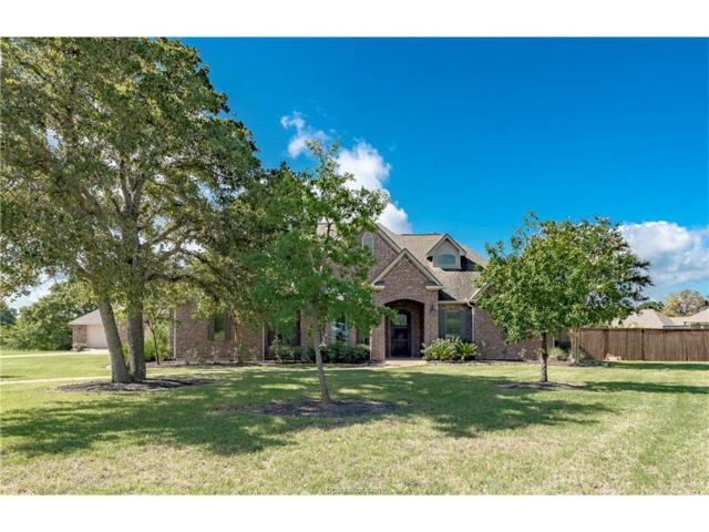 18046 White Fawn Circle, College Station, TX 77845 (MLS #17011589) :: Cherry Ruffino Realtors