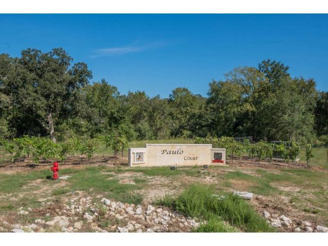 5025 Paulo Court, Bryan, TX 77808 (MLS #17013215) :: Cherry Ruffino Realtors