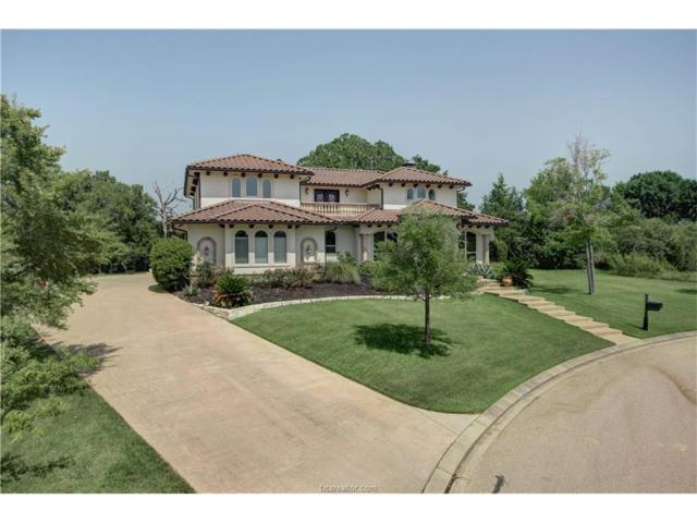 3314 Emory Oak Drive, Bryan, TX 77807 (MLS #17013322) :: The Lester Group