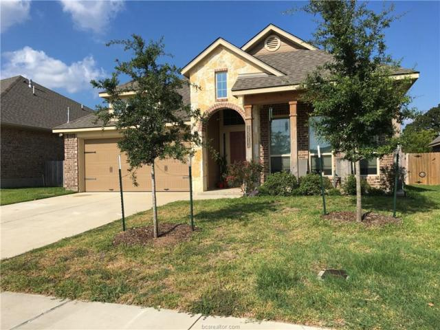 15313 Lowry Meadow Lane, College Station, TX 77845 (MLS #17013345) :: The Lester Group