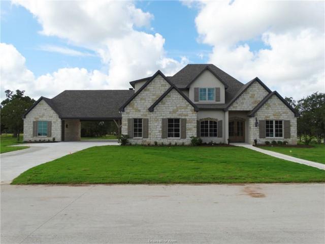 4430 Williams Lake Drive, College Station, TX 77845 (MLS #17014356) :: Cherry Ruffino Realtors