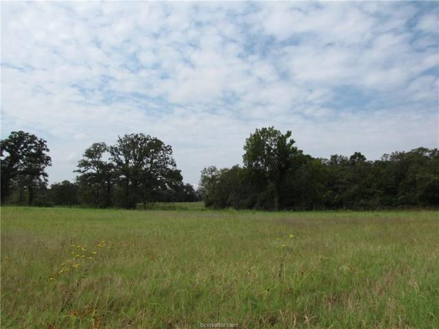 6083 Koppe Bridge Road, College Station, TX 77845 (MLS #17014520) :: Treehouse Real Estate
