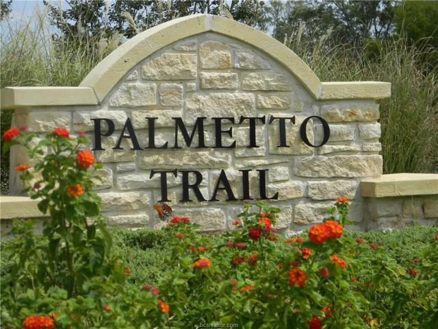 3118 Palmetto Trail, Bryan, TX 77807 (MLS #17014537) :: Platinum Real Estate Group