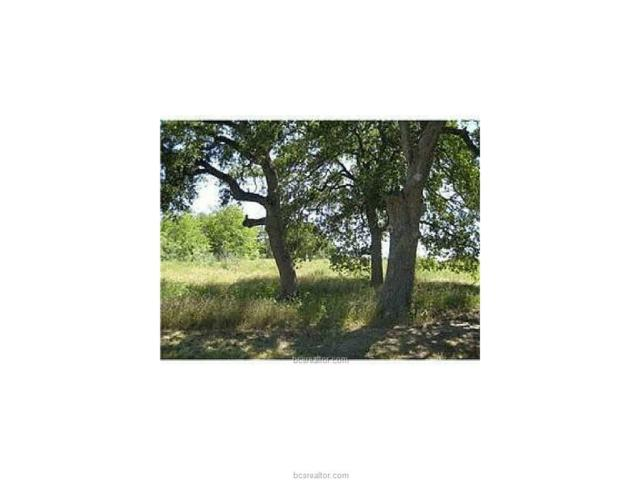 Lot 323 Scarborough Drive, Iola, TX 77861 (MLS #17015663) :: The Tradition Group