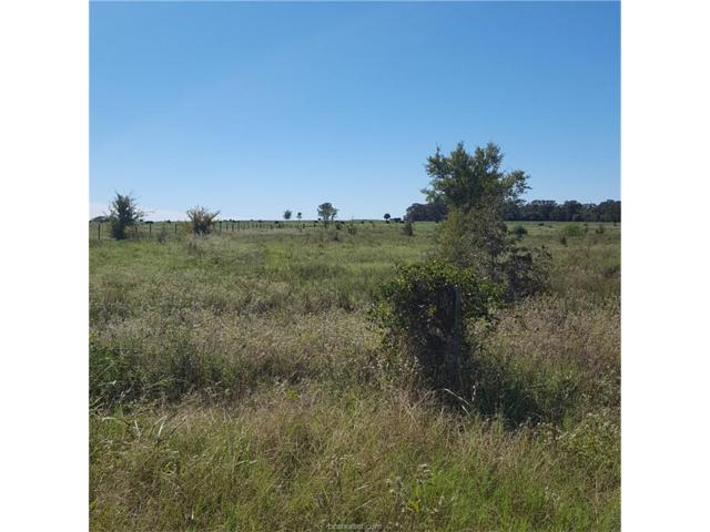 SEC. 4, BLOCK 1, Lot County Road 121, Iola, TX 77861 (MLS #17015891) :: The Tradition Group