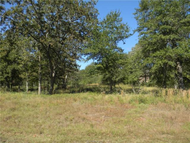 Lot 37 Belgrave Square, Iola, TX 77861 (MLS #17017055) :: The Tradition Group