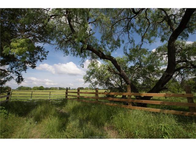 5 N Old Springfield Road, North Zulch, TX 77872 (MLS #17017115) :: Amber Cox