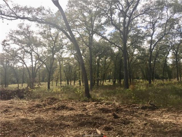 LOT 4 County Road 310, Caldwell, TX 77836 (MLS #17017195) :: Cherry Ruffino Realtors