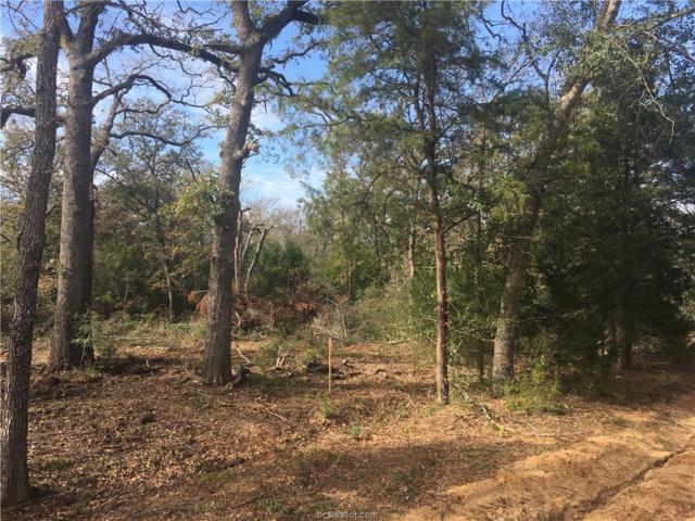 LOT 2 County Road 310, Caldwell, TX 77836 (MLS #17017196) :: Cherry Ruffino Realtors