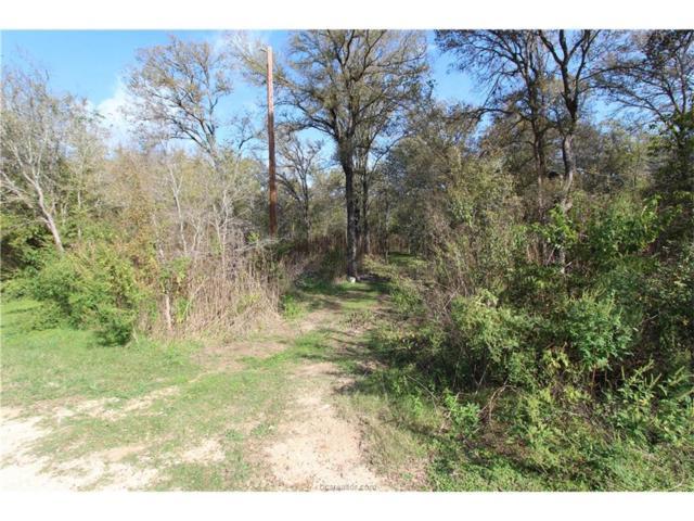 6052 Mimosa Circle, Bryan, TX 77807 (MLS #17017567) :: The Lester Group