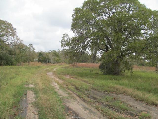 11749 Cajun Ridge Road, Iola, TX 77861 (MLS #17017603) :: Cherry Ruffino Realtors
