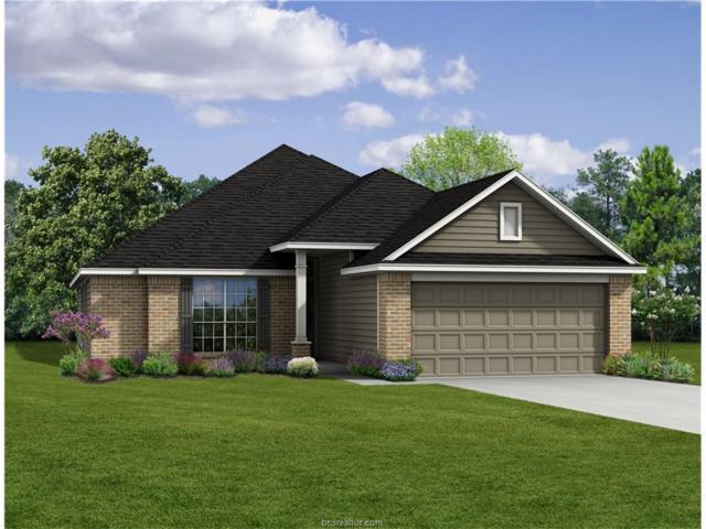 807 Mockingbird Street, Navasota, TX 77868 (MLS #17017641) :: Cherry Ruffino Realtors
