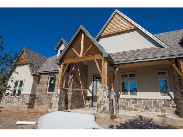 17325 Lesharo Cove, College Station, TX 77845 (MLS #17017744) :: Platinum Real Estate Group